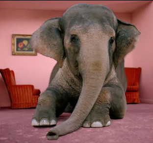 elephant in room - source forevernewlywedded dot blogspot