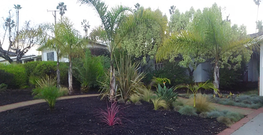 Brad & Ann's xeriscape landscaping