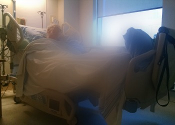 old man in hospital bed